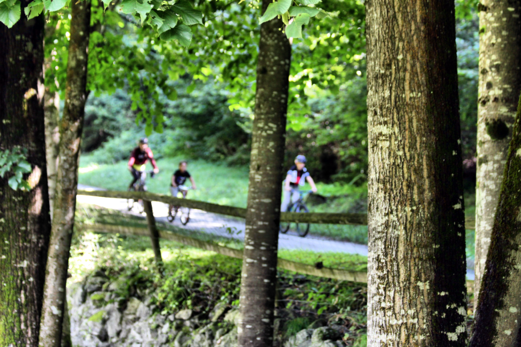 La ciclabile  segue il corso del fiume Sarca attraversa la Val Rendena con circa 30 km di ciclo-pedonale con passaggio proprio nelle immediate vicinanze del Maso Tesadri.
